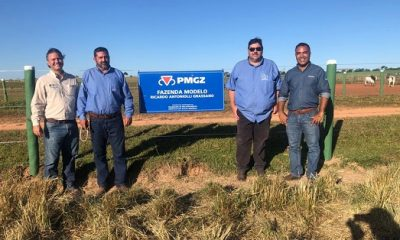 Gerente de Fomento e técnico de campo da ABCZ visitam a Fazenda Modelo parceiro do PMGZ em MS