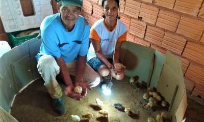 Projeto de coleta de lixo rural beneficia mais de 500 famílias no Norte de Minas