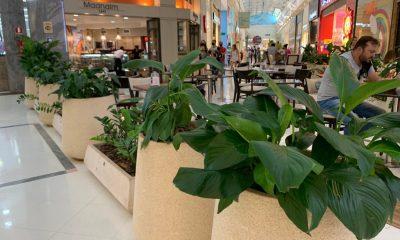 Pesquisa aponta que Shoppings devem aumentar interação e áreas agradáveis