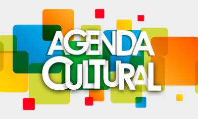 Agenda Cultural da Cemig destaca apresentação inovadora de Arnaldo Antunes no Inhotim