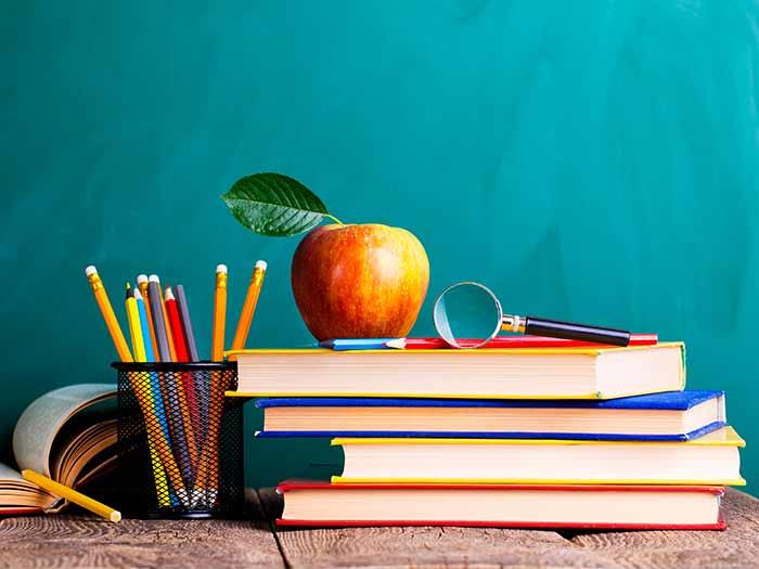 Plano de Gestão da Educação será elaborado e monitorado por uma comissão de servidores